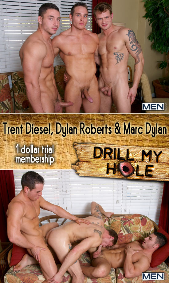Trent Diesel, Dylan Roberts and Marc Dylan