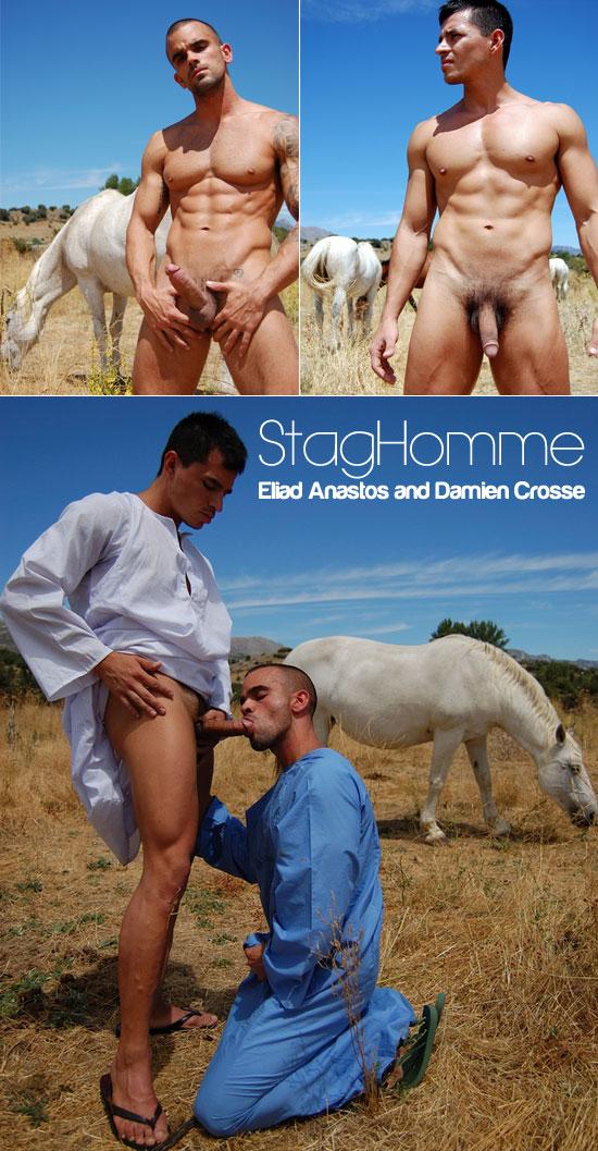 Eliad Anastos and Damien Crosse