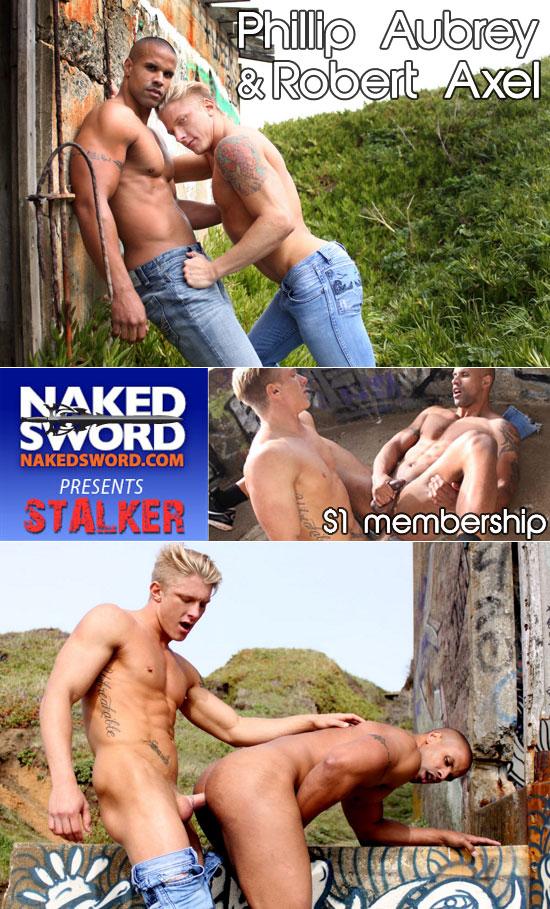 The Stalker series