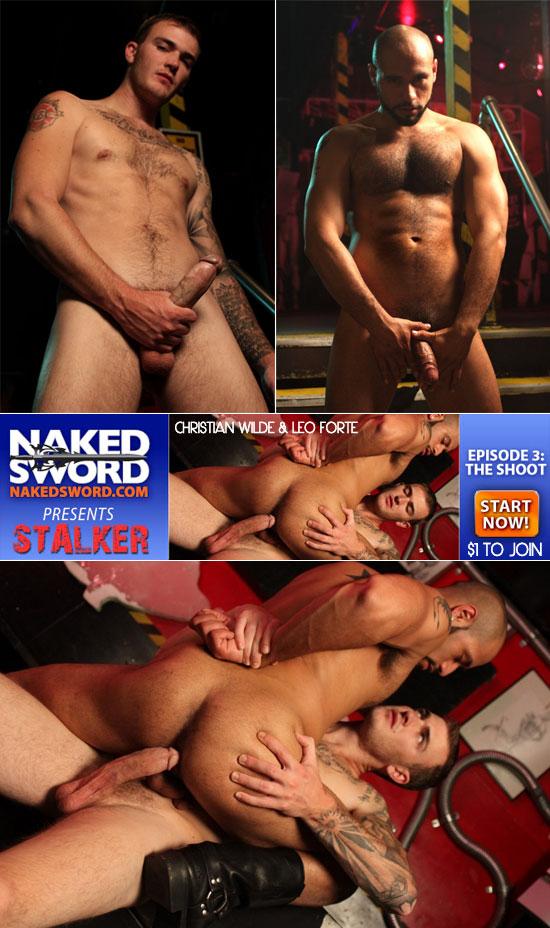 Stalker series